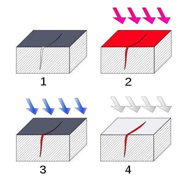1. Section of material with a surface-breaking crack that is not visible to the naked eye. 2. Penetrant is applied to the surface. 3. Excess penetrant is removed. 4. Developer is applied, rendering the crack visible. (1)